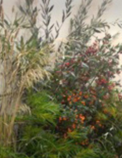 Harvest-Studio-800x520-2