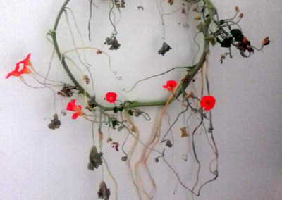 Harvest-Studio-Gallery-2-30