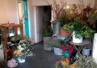 Harvest-Studio-Gallery-62