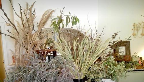Harvest-Studio-Gallery-102
